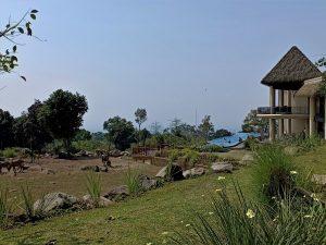 Baobab Safari Resort Prigen East Java