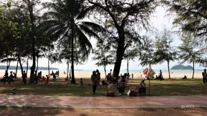 pine trees shed at Samila Beach Hat Yai Songkhla Thailand